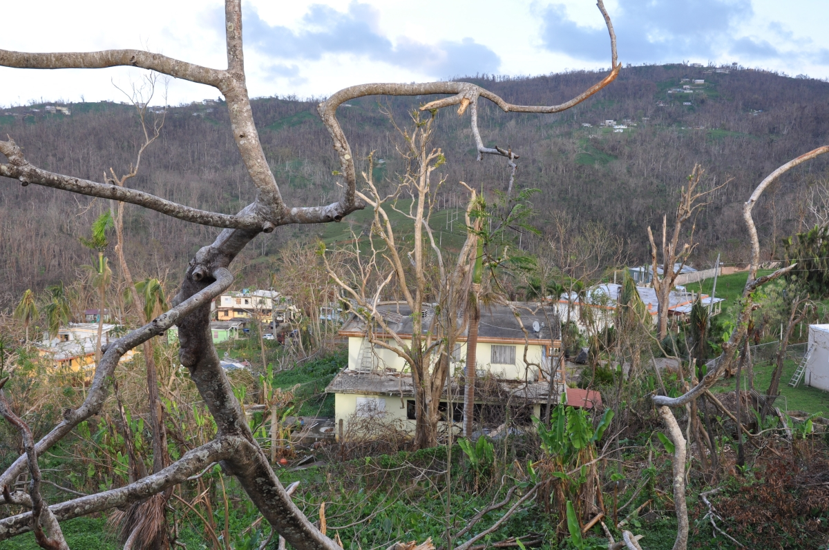 Puerto Rico Needs Massive Emergency Aid Now—and an End to Austerity